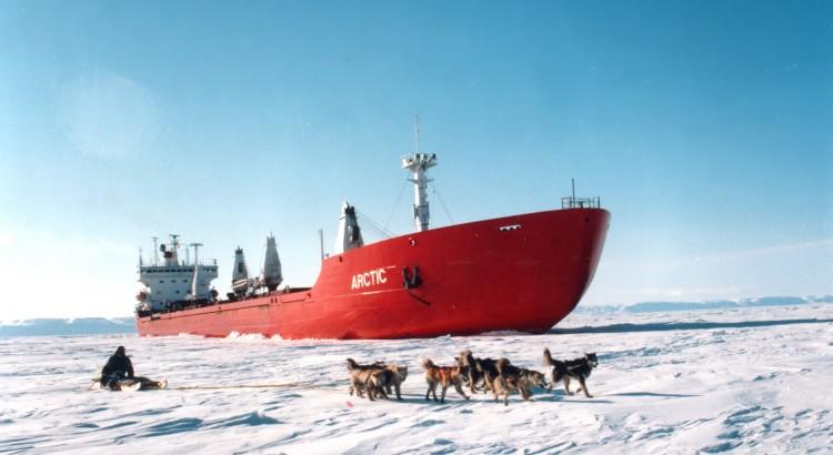 arctic2010