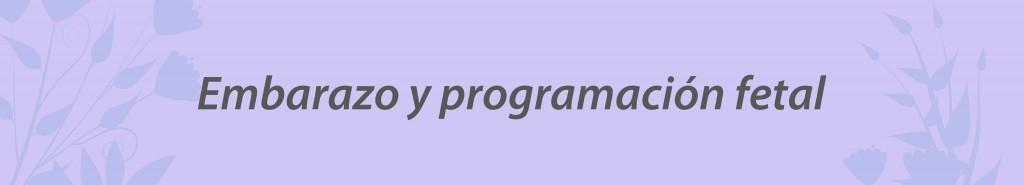 seminarios-online-nutricion-embarazo-obstetricia