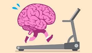 Cerebro ejercitando
