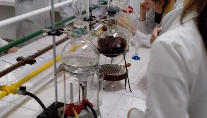 lab farmacia 2