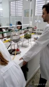 lab farmacia 6
